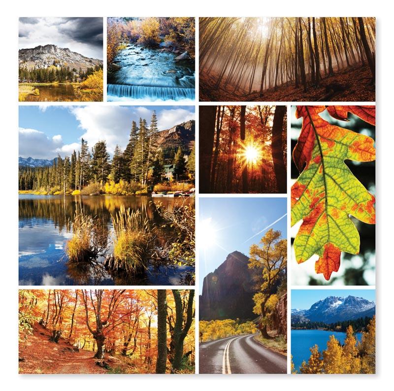 Autumn Snapshots Fall Jigsaw Puzzle