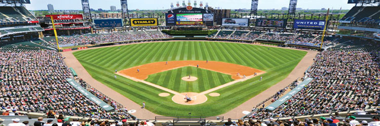 Chicago White Sox - Scratch and Dent Sports Jigsaw Puzzle