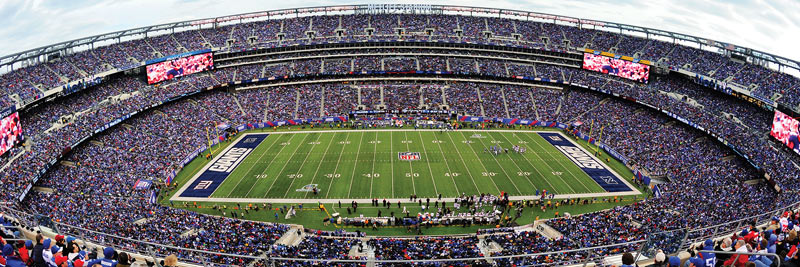NFL New York Giants - Scratch and Dent Landmarks / Monuments Jigsaw Puzzle