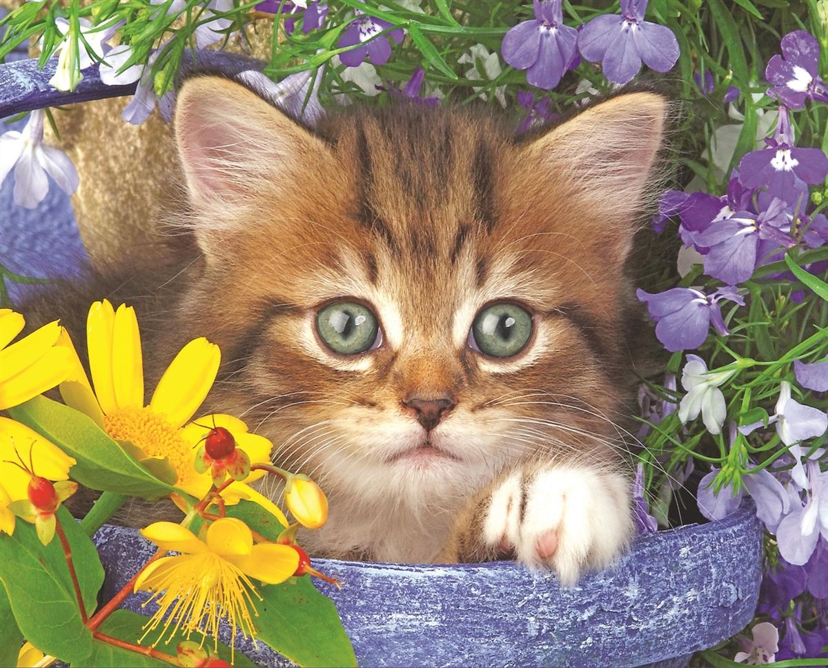 Garden Helper Cats Jigsaw Puzzle