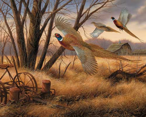 Prairie Wings Birds Jigsaw Puzzle