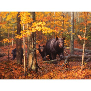 Many Faces of the Woods - Scratch and Dent Wildlife Jigsaw Puzzle