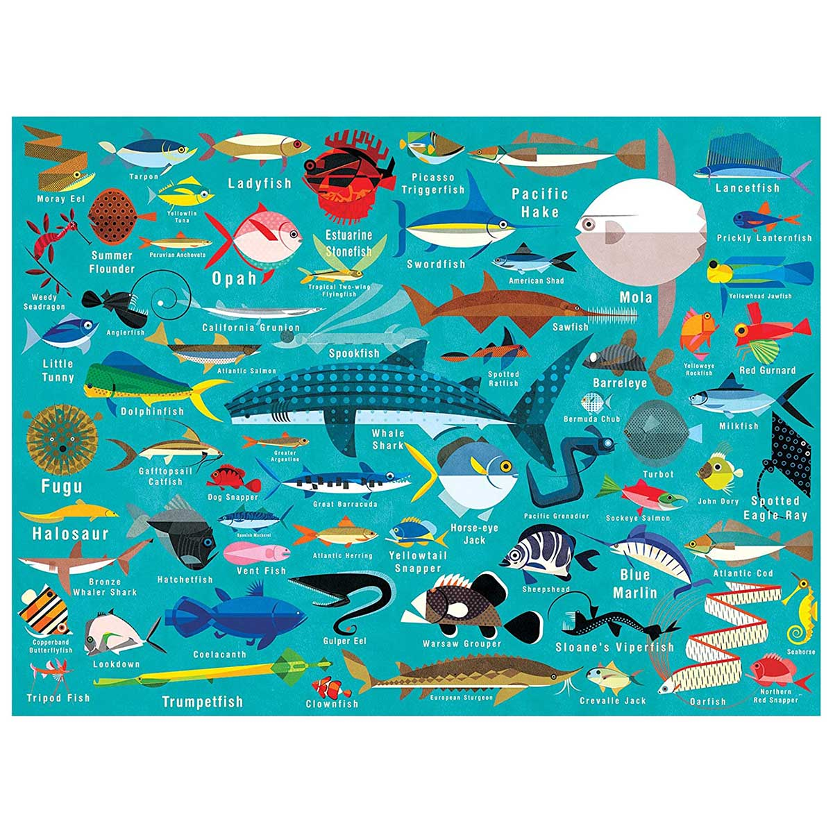 Ocean Life Under The Sea Jigsaw Puzzle