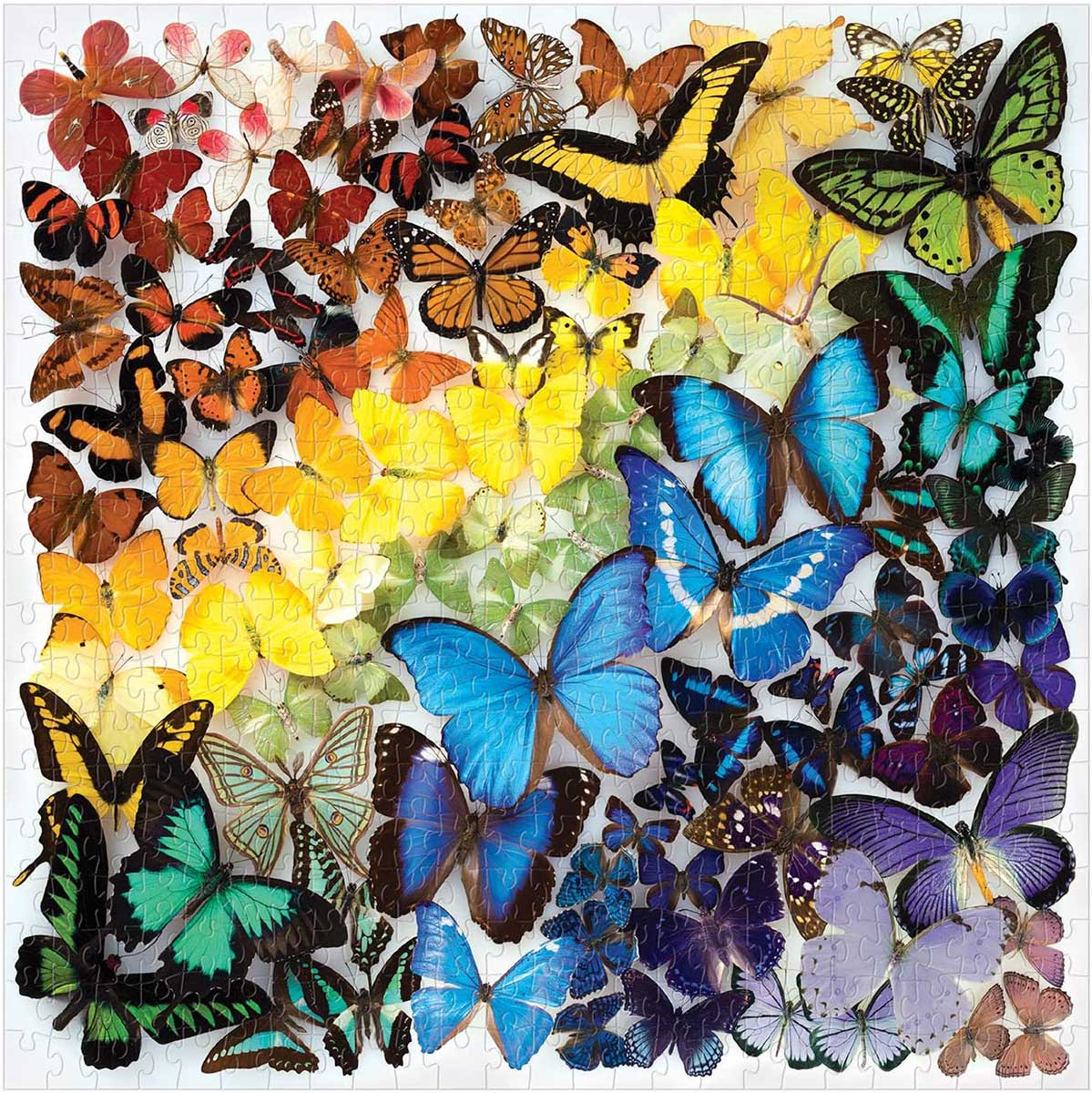 Rainbow Butterflies Butterflies and Insects Jigsaw Puzzle