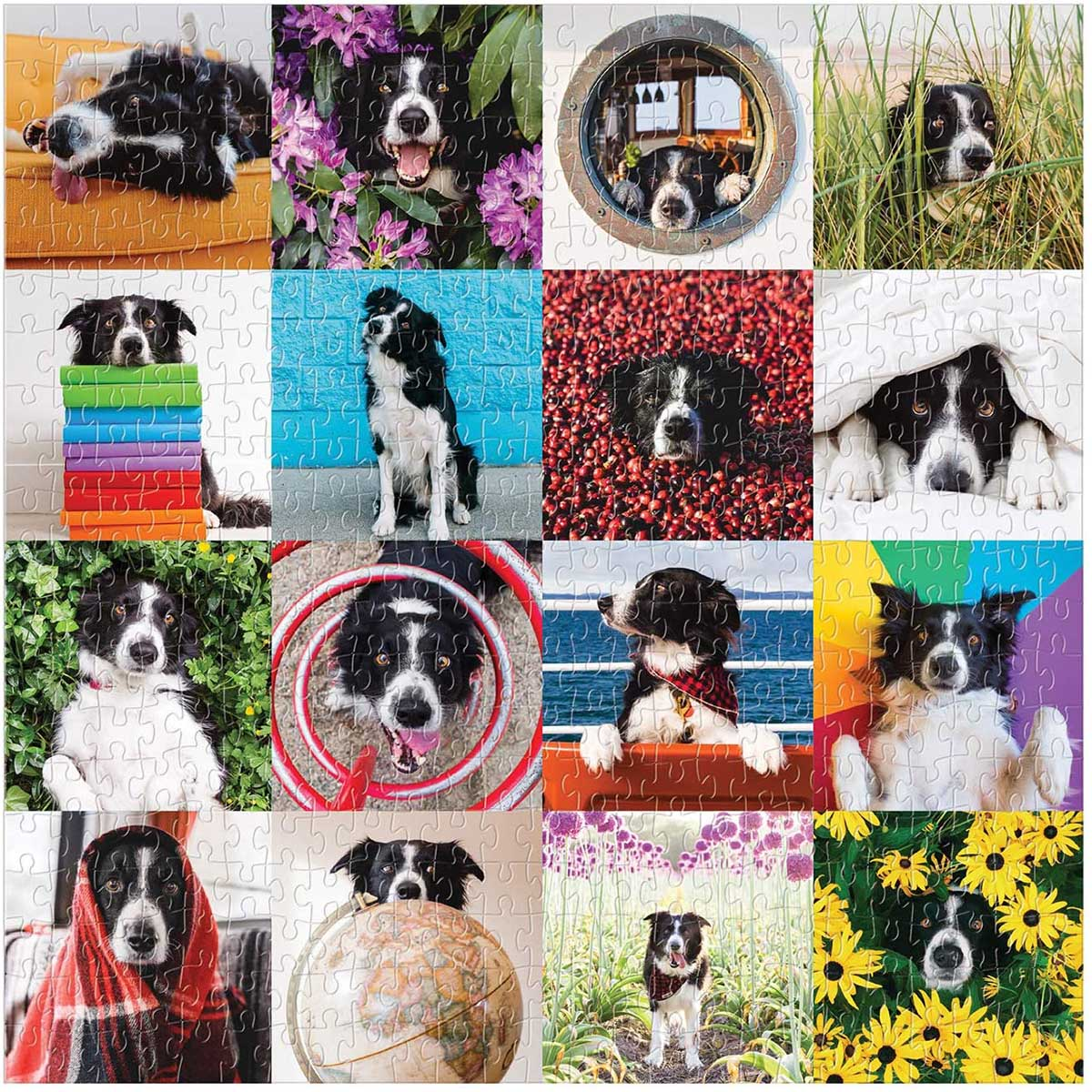 Momo The Dog Dogs Jigsaw Puzzle