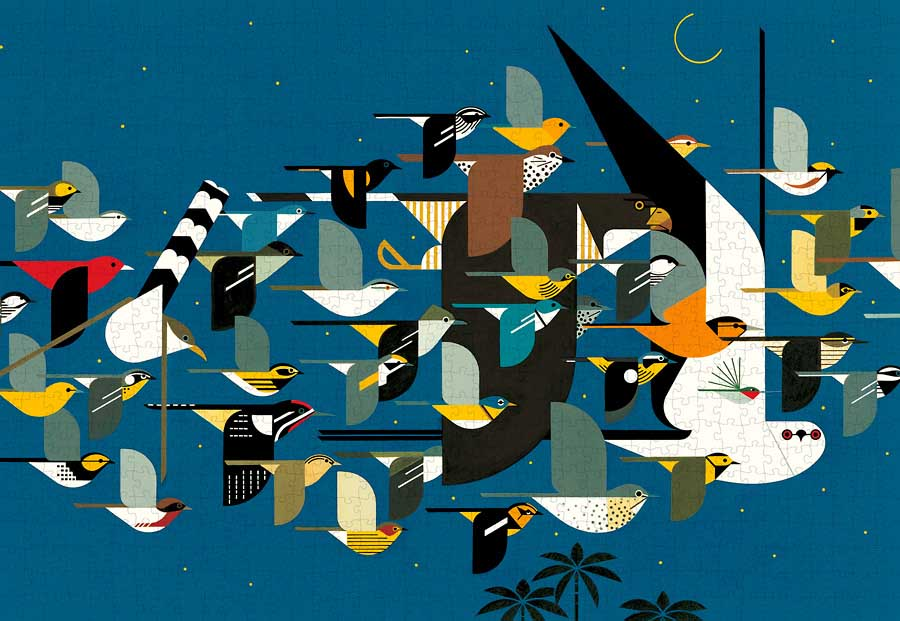 Mystery of the Missing Migrants, 1990 Birds Jigsaw Puzzle