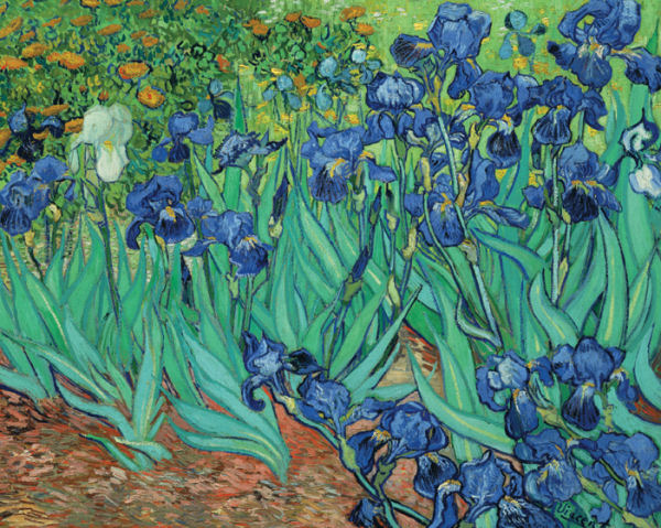 Irises Impressionism Jigsaw Puzzle