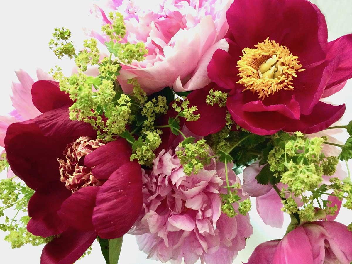 Peony Bouquet Flowers Jigsaw Puzzle
