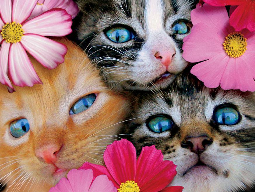 Kittens in Flowers (Avanti) Cats Jigsaw Puzzle