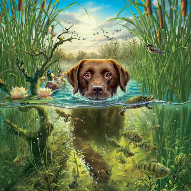 Labrador (Mark Fredrickson Water's Edge) Dogs Jigsaw Puzzle