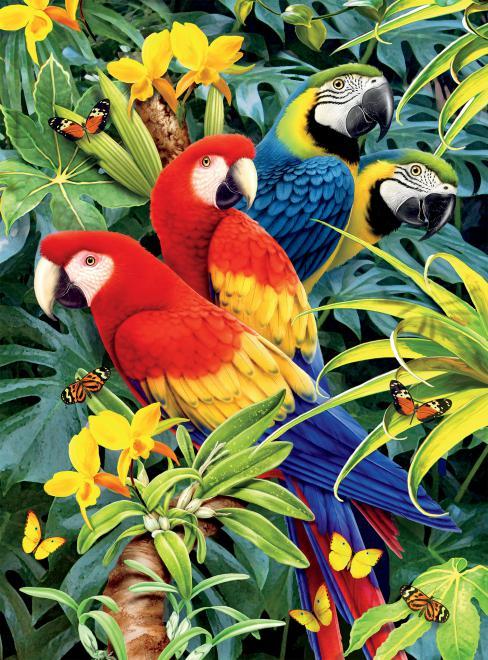 Majestic Macaws (Wild) Birds Jigsaw Puzzle