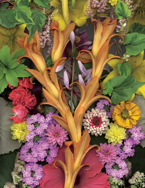 Floral Solstice Flowers Jigsaw Puzzle