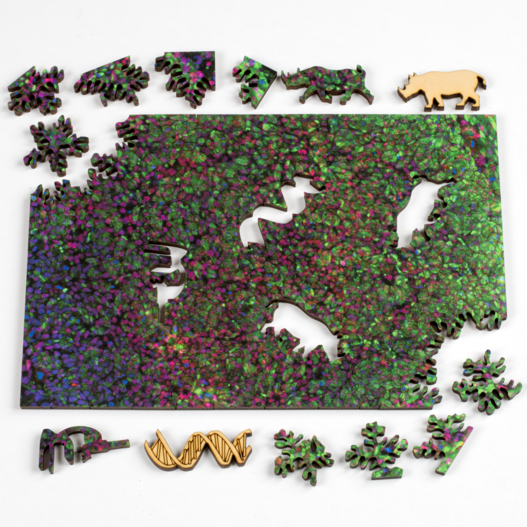 Northern White Rhino Abstract Jigsaw Puzzle
