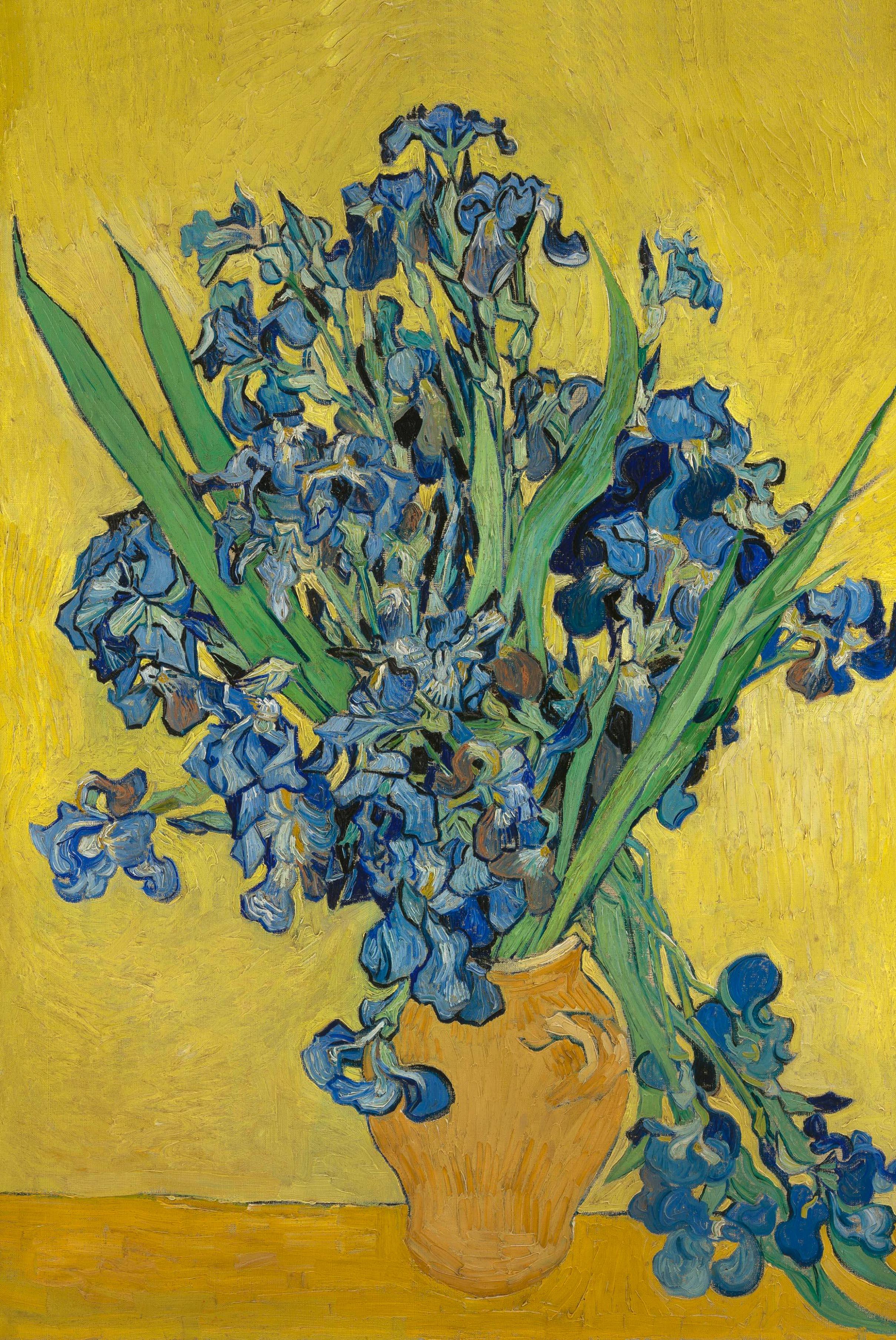 Irises by Van Gogh Fine Art