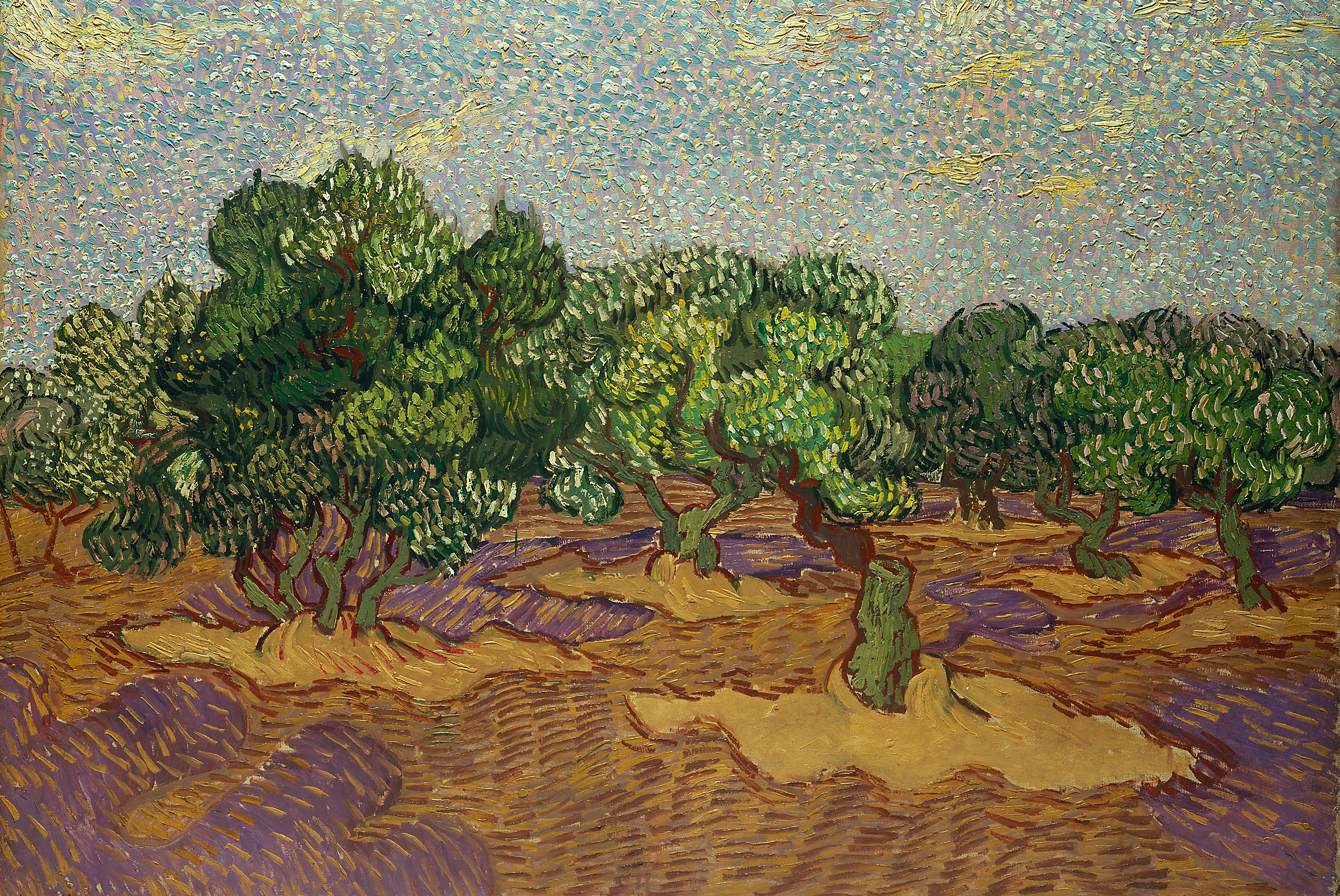 Olive Trees by Van Gogh Fine Art