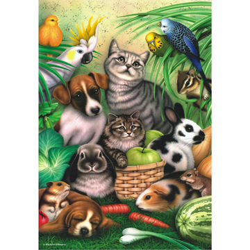 Magic Pets Animals Jigsaw Puzzle