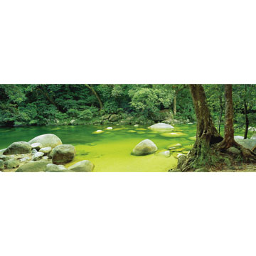 Mossman Gorge Forest Jigsaw Puzzle