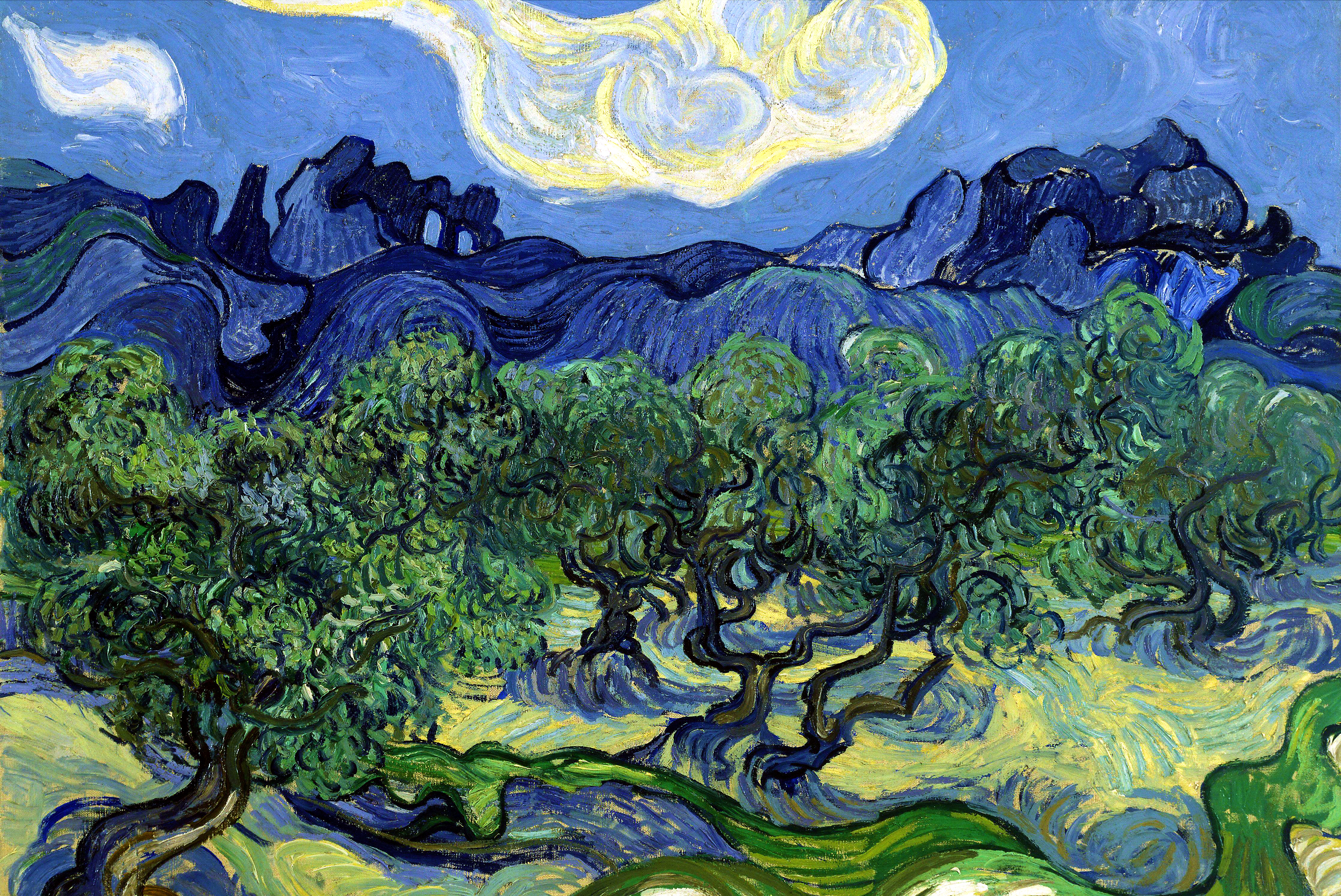 The Olive Trees by Van Gogh | PuzzleWarehouse.com