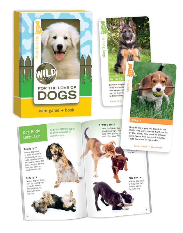 Wild Cards: Dogs Dogs Card Game