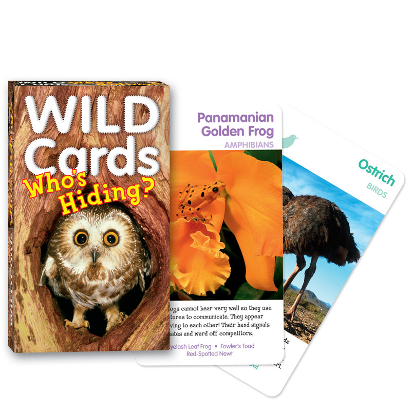 Wild Cards: Who's Hiding Card Game