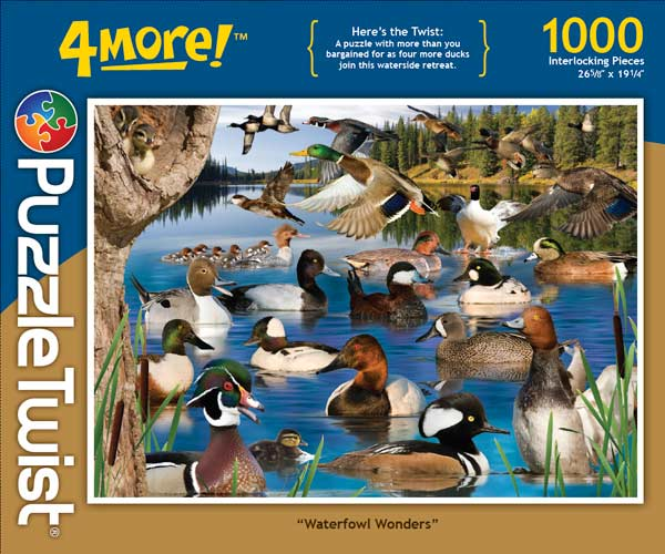 Waterfowl Wonders Birds Hidden Images