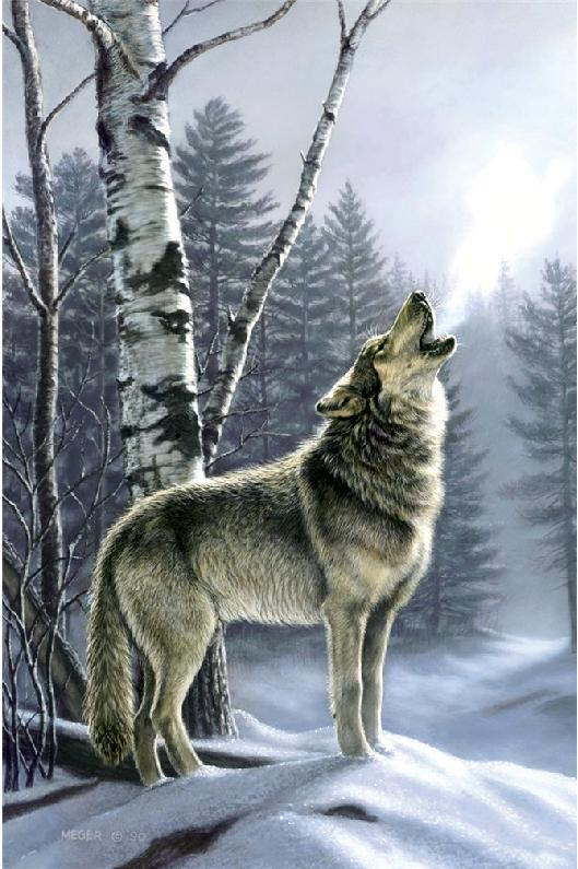 Alpha Wolves Jigsaw Puzzle