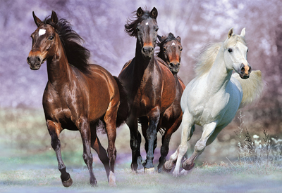 At Full Gallop Horses Jigsaw Puzzle