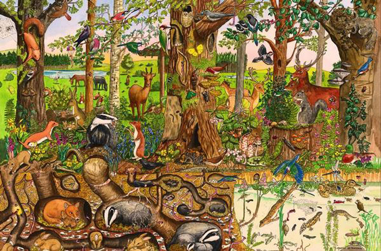 Woodlands Floor Puzzle (48pc) Wildlife Children's Puzzles