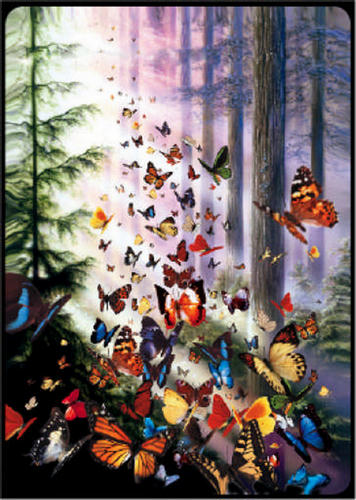 Bridge Playing Cards - Butterfly Woods Butterflies and Insects Playing Cards