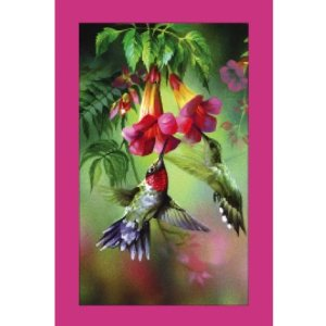 Bridge Playing Cards - Summer Hummer Birds Playing Cards