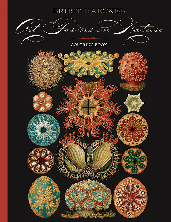 Ernst Haeckel: Art Forms in Nature Coloring Book Coloring Book ...