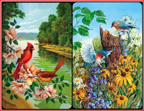 Bridge Playing Cards - Feathered Friends Birds Playing Cards