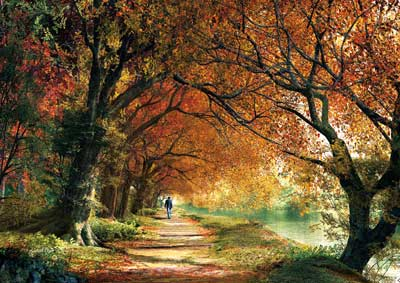 Forever Autumn Fall Jigsaw Puzzle