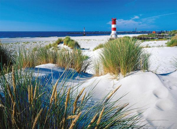 In the Dunes Beach Jigsaw Puzzle