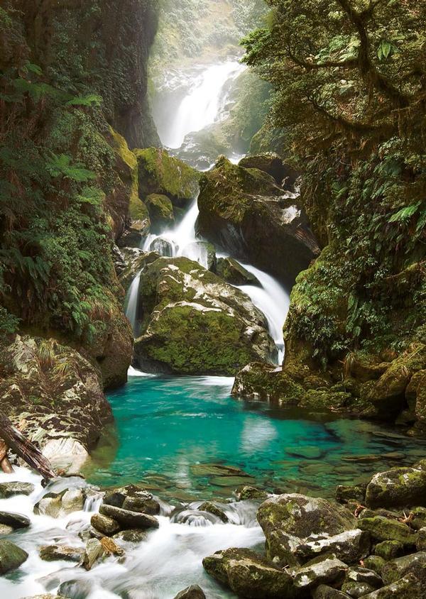 Mackay Falls, New Zealand Forest Jigsaw Puzzle