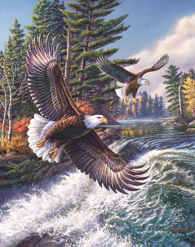 MINI - White Water Eagles Jigsaw Puzzle