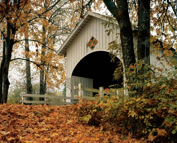Neal Lane Covered Bridge Countryside Jigsaw Puzzle