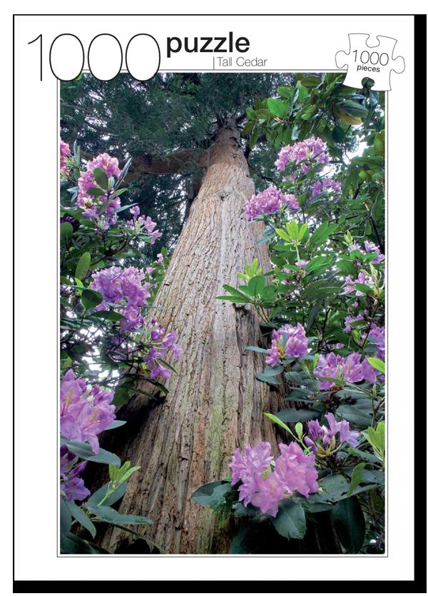 Tall Cedar Photography Jigsaw Puzzle