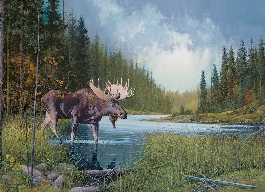 Moose Lake Wildlife Jigsaw Puzzle