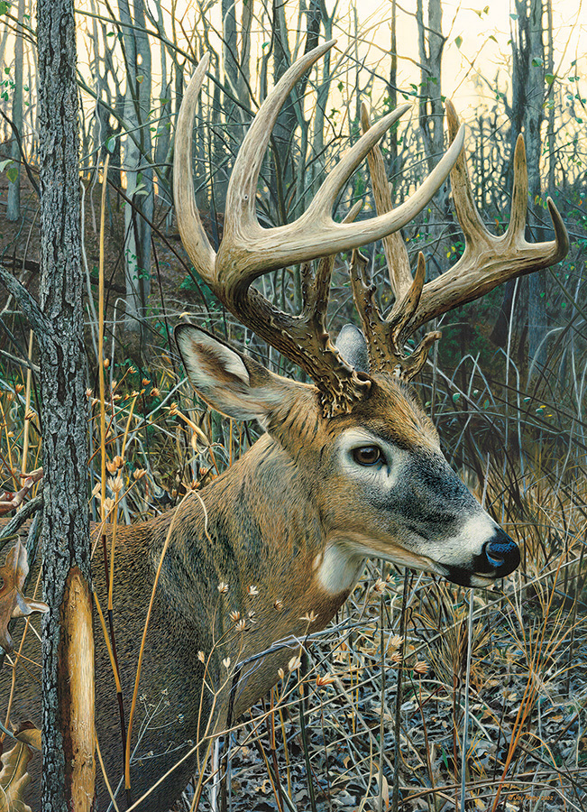 White-tailed Deer Wildlife Jigsaw Puzzle