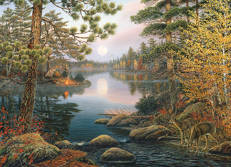 Deer Lake Nature Jigsaw Puzzle