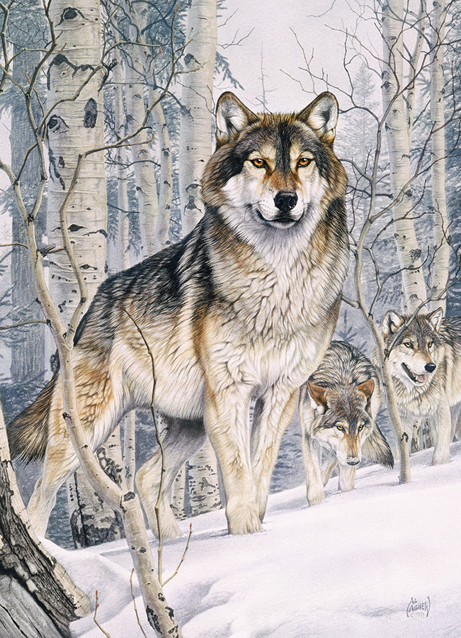 Second Glance Wolves Jigsaw Puzzle