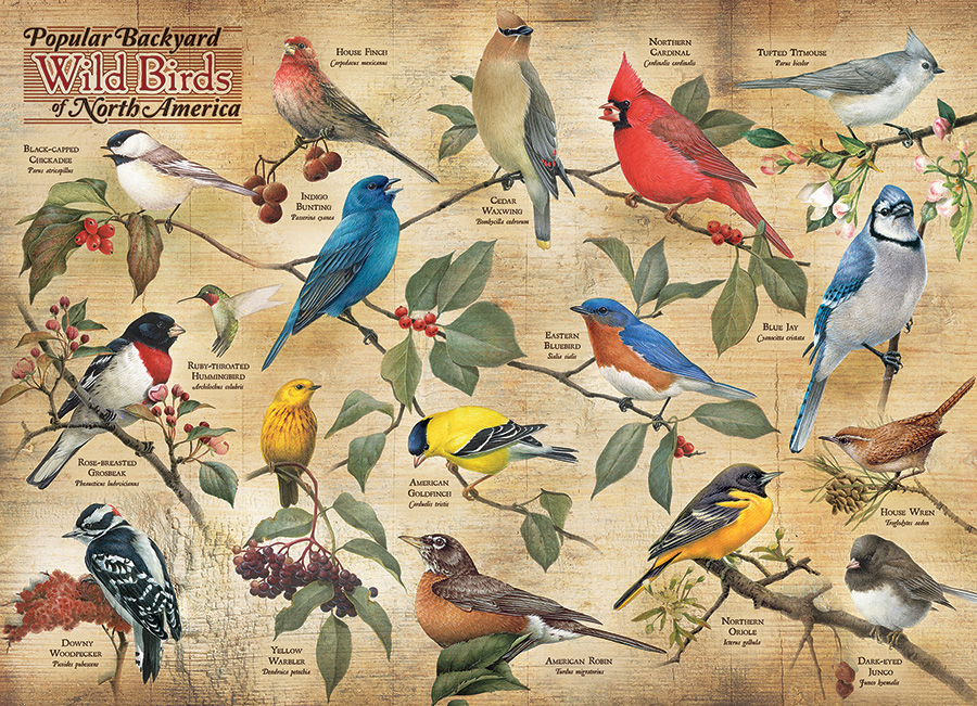 Popular Backyard Wild Birds of N.A. Birds Jigsaw Puzzle