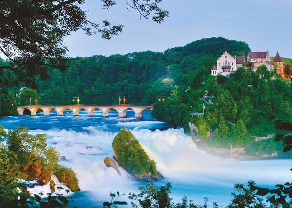 Rhein Falls Forest Jigsaw Puzzle