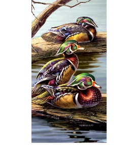 The Boys Birds Jigsaw Puzzle