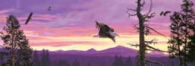 To Surf the Sunset Eagles Jigsaw Puzzle