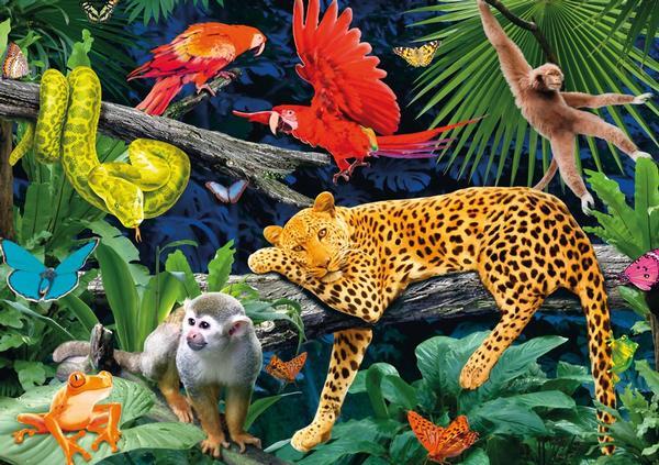 Wild Jungle 3D