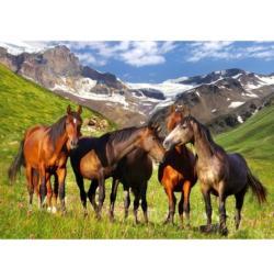Mountain Horses Horses Jigsaw Puzzle