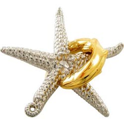 Hanayama Starfish Hanayama
