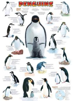 Penguins Birds Children's Puzzles